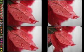 compare_few_ii_1.jpg