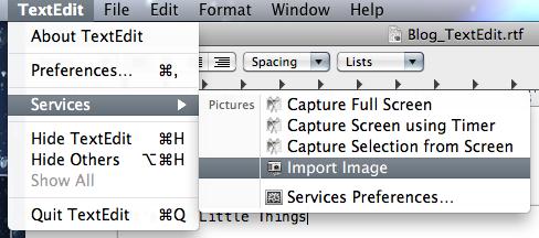 TextEdit PicServices